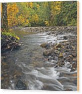 Autumn Meander Wood Print