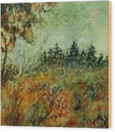 Autumn Mist 68 Wood Print