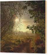 Autumn Mist Wood Print by Kim Shatwell-Irishphotographer