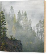 Autumn Mist Wood Print by Mike  Dawson