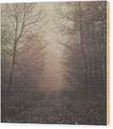 Autumn Mists Wood Print