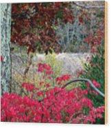 Autumn Mixtures Wood Print