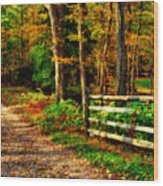 Autumn Moment - Allaire State Park Wood Print