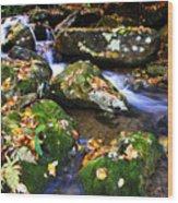 Autumn Monongahela National Forest Wood Print