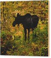 Autumn Moose Wood Print