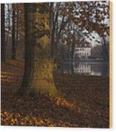 Autumn Morning In Park Branitz Wood Print