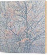 Autumn Morning Sugar Maple Wood Print