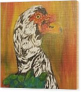 Autumn Muscovy Portrait Wood Print