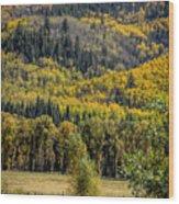 Autumn On A Colorado Range Wood Print