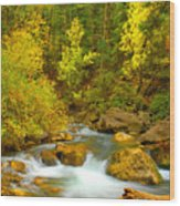 Autumn On Big Cottonwood River Wood Print