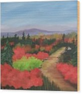 Autumn On Dolly Sods Wood Print