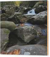 Autumn On Little River In The Smoky Mountains Wood Print