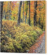 Autumn On Long Pond Road Wood Print
