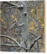 Autumn On My Mind Wood Print