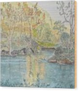 Autumn On The Ausable River Wood Print