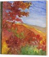 Autumn On The Cherohala Skyway Wood Print