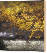 Autumn On The Cove Wood Print