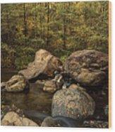 Autumn On The Creek  Wood Print