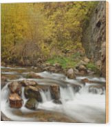 Autumn On The Provo River Wood Print