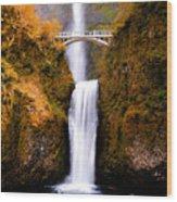 Autumn Orange Multnomah Falls Wood Print