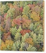 Autumn Palette Wood Print