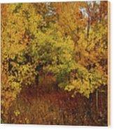 Autumn Palette Wood Print by Carol Cavalaris