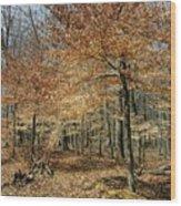Autumn Paradise Wood Print