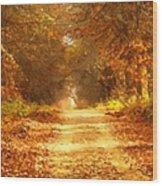 Autumn Paradisium Wood Print