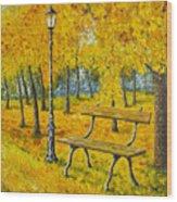 Autumn Park Wood Print