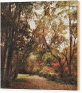 Autumn Passage II Wood Print