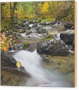 Autumn Passing Wood Print