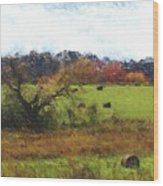 Autumn Pasture Wood Print