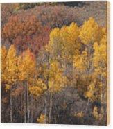 Autumn Patchwork Wood Print