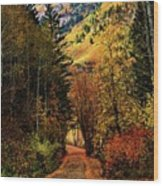 Autumn Path To Stewart Falls Wood Print