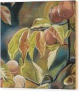 Autumn Peaches Wood Print
