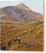 Autumn Peaks In The Rockies Wood Print