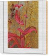Autumn Penstemon Poster Wood Print