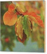 Autumn Persimmon Leaves Wood Print