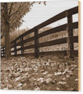 Autumn Perspective Wood Print