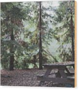 Autumn Picnic In The Woods  Wood Print