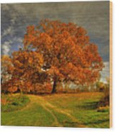 Autumn Picnic On The Hill Wood Print