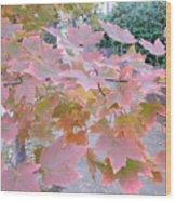 Autumn Pink Wood Print