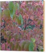 Autumn Pink Poster Wood Print