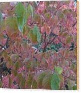 Autumn Pink Poster Wood Print