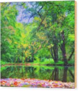 Autumn Pond In Gladwyne Wood Print by Bill Cannon