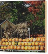 Autumn Pumpkins And Cornstalks Graphic Effect Wood Print
