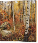 Autumn Quakies Wood Print