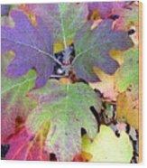 Autumn Rainbows Wood Print