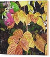 Autumn Raspberries Wood Print