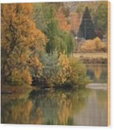 Autumn Reflection 41 Wood Print